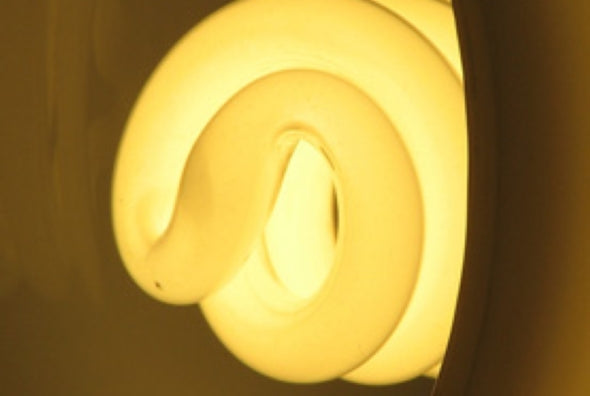 Researchers have found that ultraviolet radiation seeping through CFLs may damage skin cells.