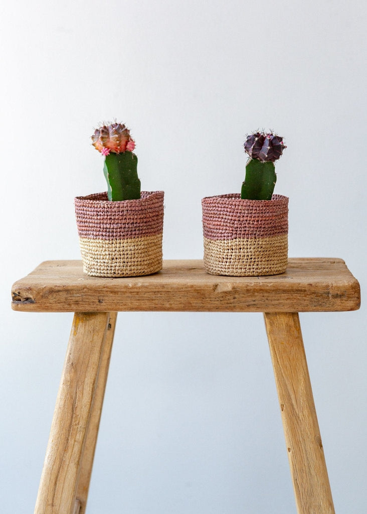 Deep Stripe Basket – Natural/Terracotta – XS - The Small Home