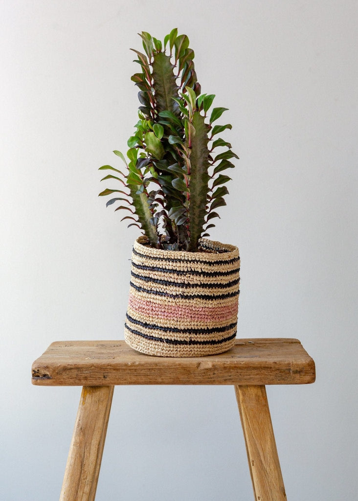 Multi Stripe Basket – Natural/Pink/Black – Small - The Small Home