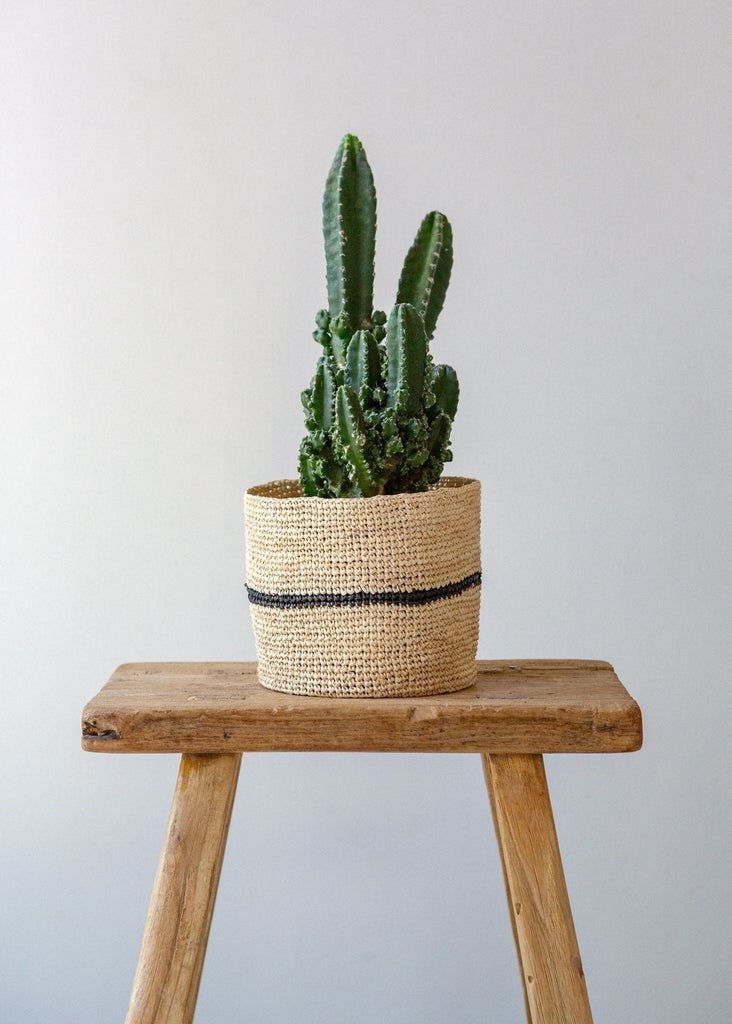 Slim Stripe Basket – Natural/Black – Small - The Small Home