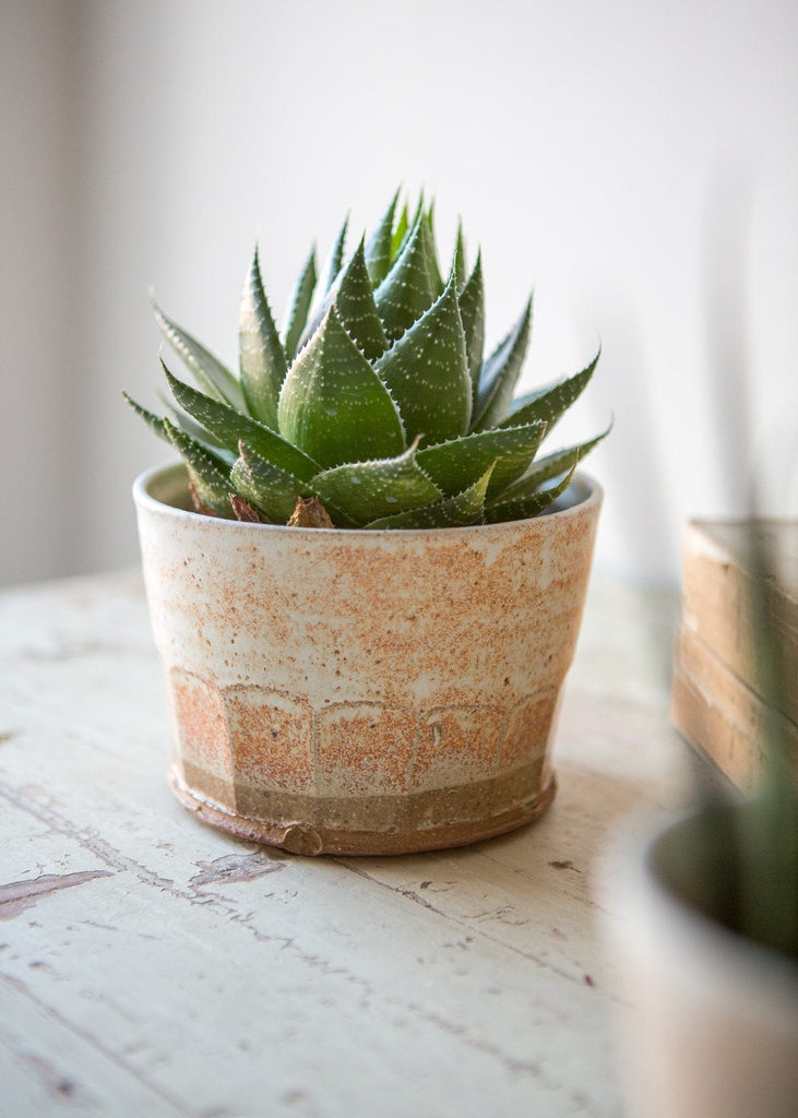 Stoneware Faceted Planters - The Small Home