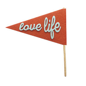 Fancy Pants Felt Pennants Love Life Felt Pennant Embellishment