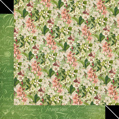 Graphic 45 Fruit & Flora Fragrant Blossoms Patterned Paper
