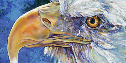 American Bald Eagle fine art print, limited edition canvas giclee
