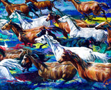 Arabian Horses Running Free fine art print, limited edition canvas giclee by Robert Hurst