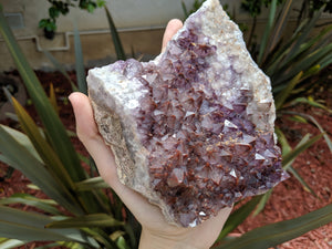 Spiritual Growth Thunder Bay Amethyst