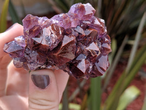 Highest Self Thunder Bay Amethyst