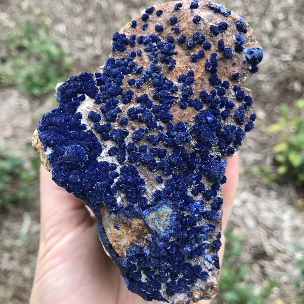 Royal Blue Botryoidal Azurite in Matrix