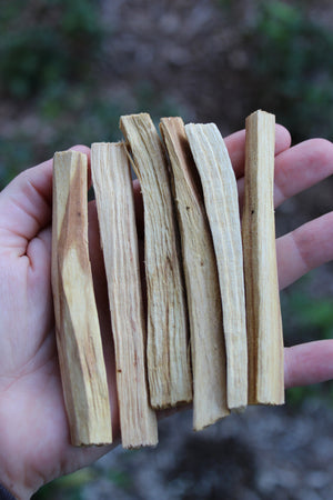 Palo Santo Wood Smudge Sticks