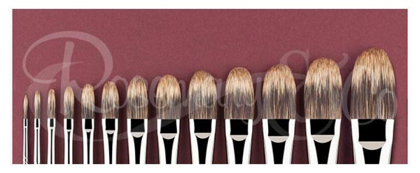 Master choice rosemary brushes