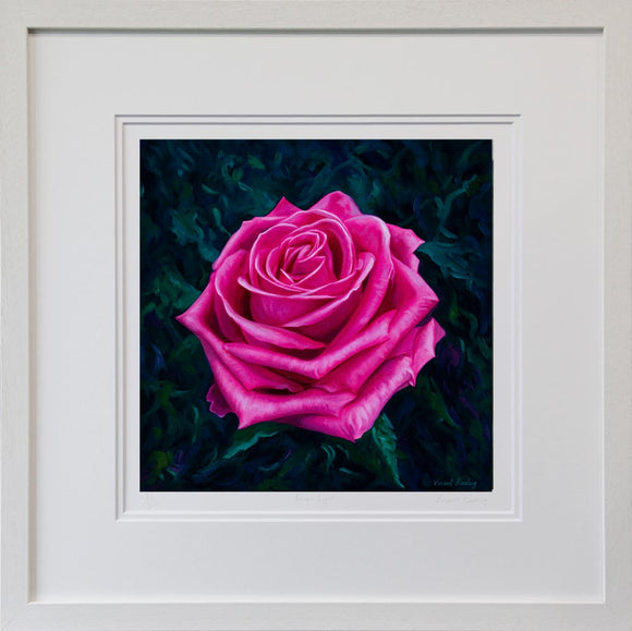 Valentine Rose Limited Edition Print