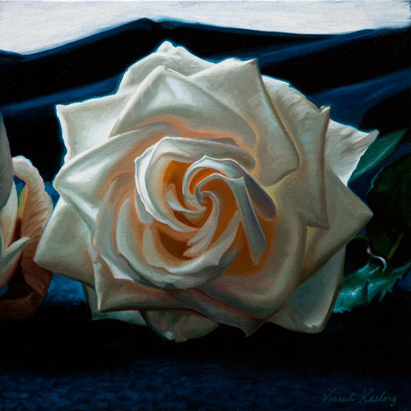 SOLD - White rose on blue cloth - Oil Painting