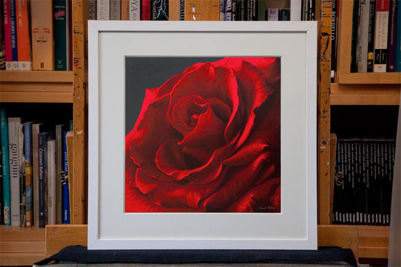 Inner Depths framed red rose print