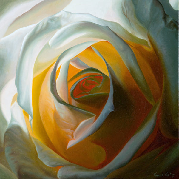 Inner Light - White Rose - Print