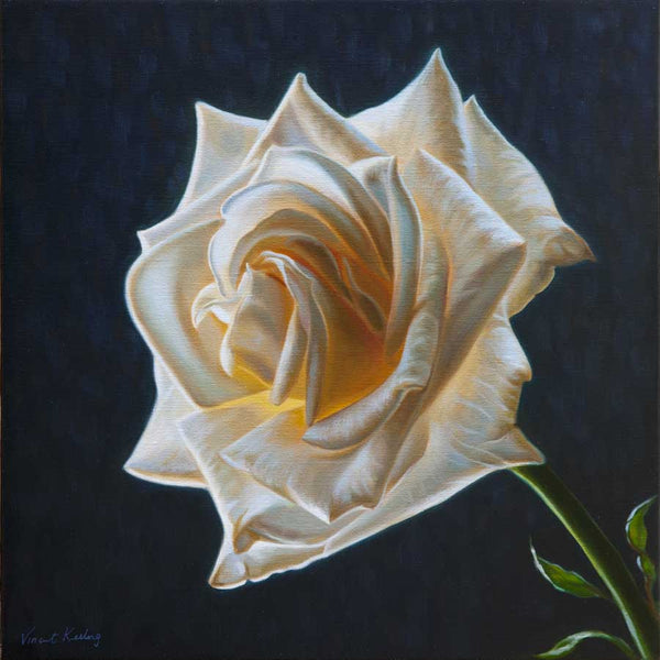 Print of a white rose from oil painting by Vincent Keeling
