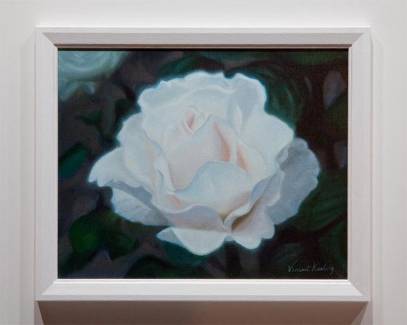 0 - White Rose in Silvery Light - Oil Painting