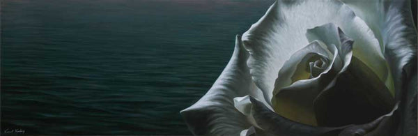 SOLD - Still Waters, white rose - Oil Painting