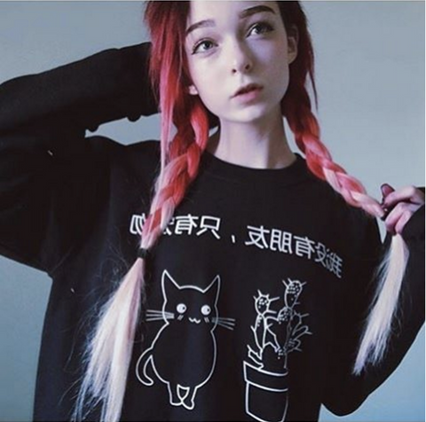 "LAST CALL - SAMPLE SALE "" I don't have any friends, just pet"" jumper"
