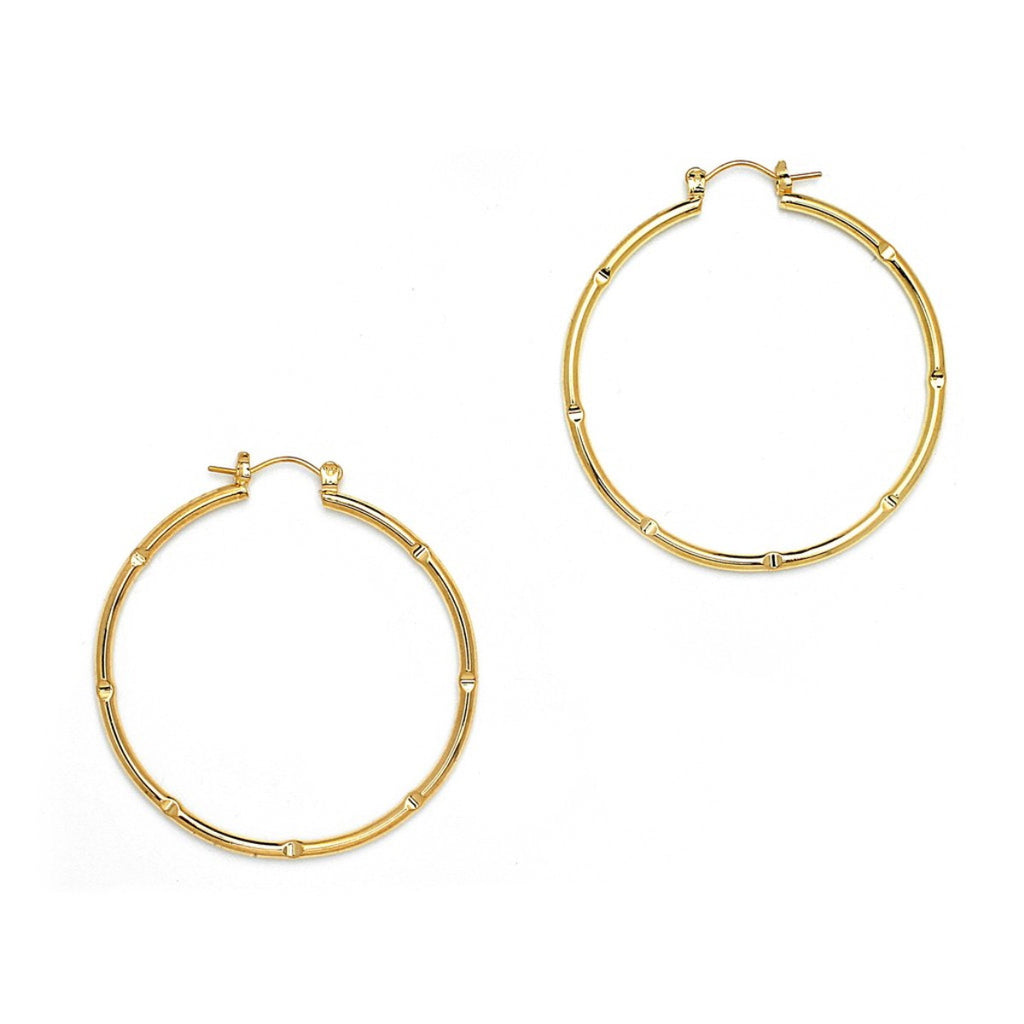 Gold Plated Pattern Round Pincatch Earrings