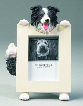 Border Collie Photo Frame