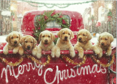 Lab Puppies Christmas Cards