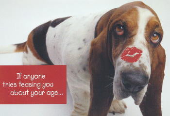 Basset Hound Birthday Card