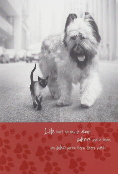 Briard and Siamese Cat Birthday Card