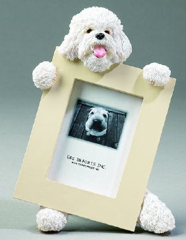 Bichon Frise Photo Frame