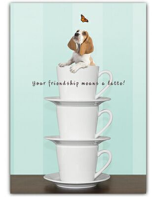 Basset Hound Thank You Card