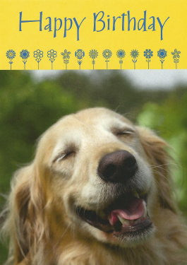 Golden Retriever Birthday Card