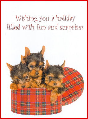 Yorkie Pups in Hat Box Christmas Cards
