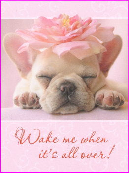 French Bulldog Friendship Card