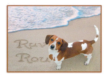 Basset Hound Mix Friendship Card