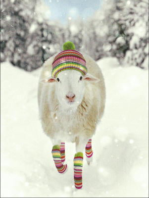 Sheep Christmas Cards
