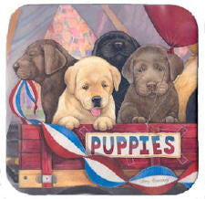 Lab Puppies Coasters