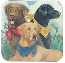 Bandana Lab Coasters