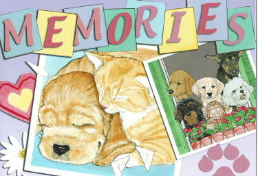 """Memories"" Pet Sympathy Cards ~ 10 pack"