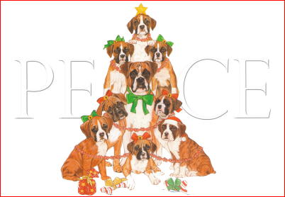 Boxer Peace Christmas Cards