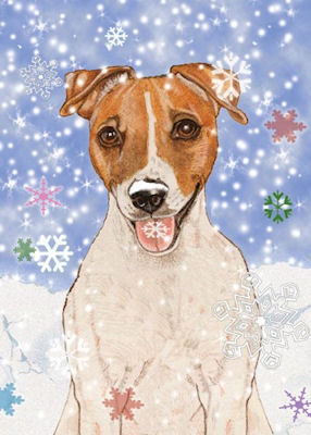 Jack Russell / Parson Russell Terrier Christmas Cards