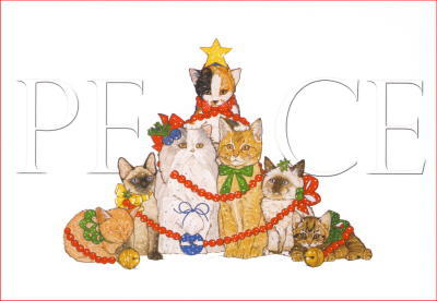 Cat Peace Christmas Cards