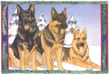 German Shepherd Christmas Cards