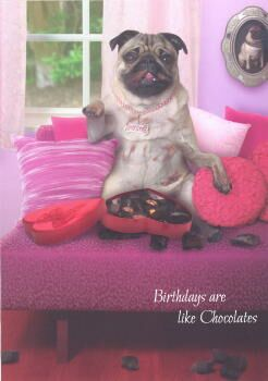 Pug Chocolates Birthday Card