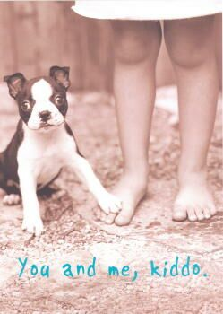 Boston Terrier Frienship Card