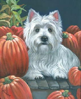 "Westie Note Cards ""Pumpkins on My Porch"""