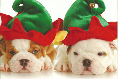 Bulldog elves Christmas cards