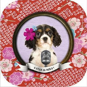 Cavalier King Charles Spaniel Friendship Card