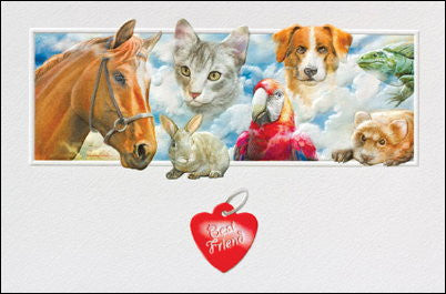pet sympathy card dog cat horse rabbit iguana parrot
