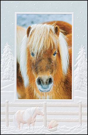 Pony Christmas Cards
