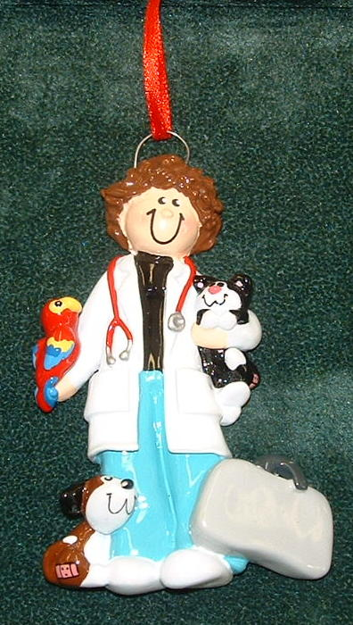 Veterinarian Christmas Ornament (woman)