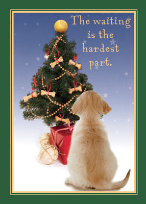 "Golden Retriever Christmas Cards ""pup at tree"""
